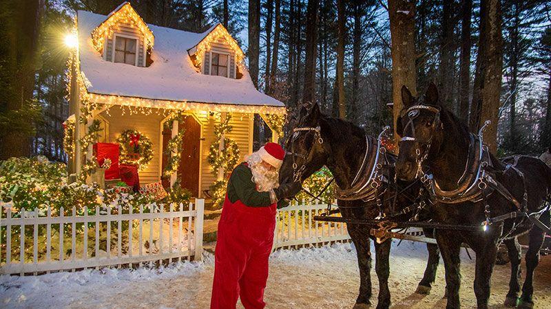 Lighted Winter Wonderland 1