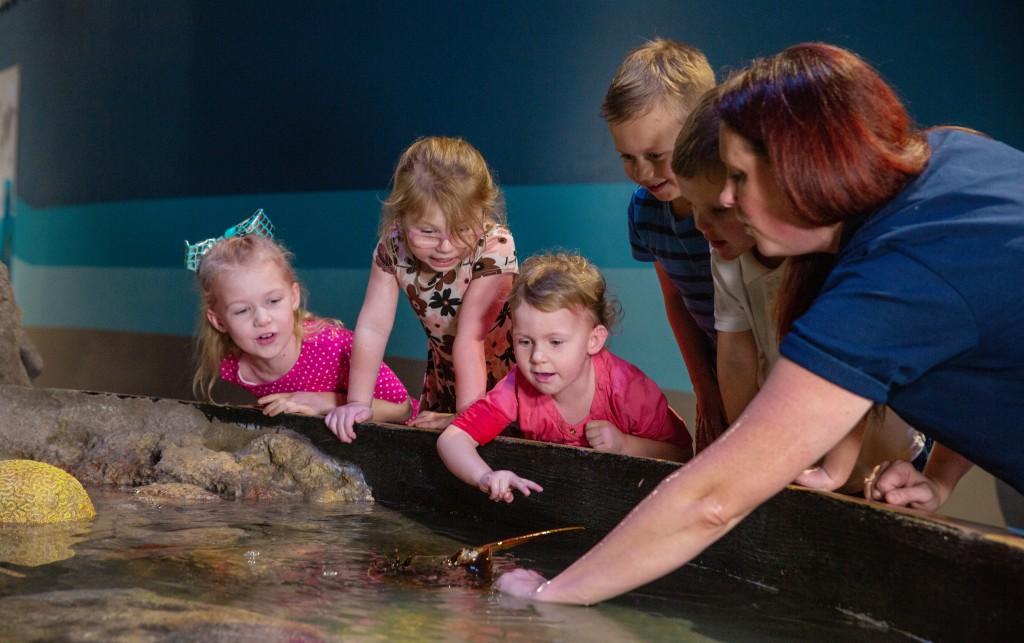 Aquarium Day 3 30